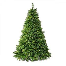 Royal H 210 cm tree