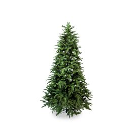 Olav Tree H 180 cm
