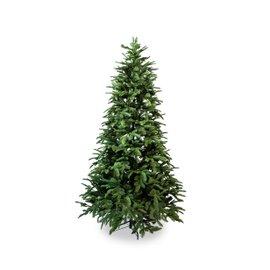 Olav Tree H 210 cm